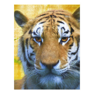 Tiger in the Bamboo - Painting Letterhead