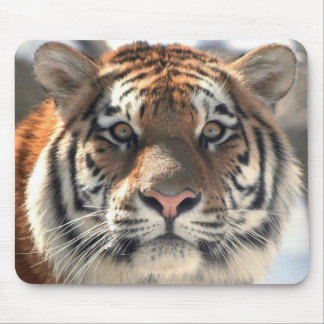 """""""TIGER IN THE WILDLIFE"""" MOUSE PAD"""