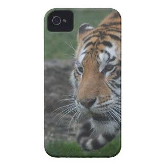 tiger iPhone 4 Case-Mate case