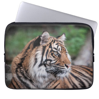 Tiger Laptop Computer Sleeve