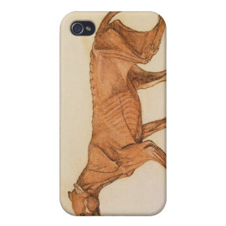 Tiger, Lateral View, Skin Removed, from 'A Compara iPhone 4/4S Cover