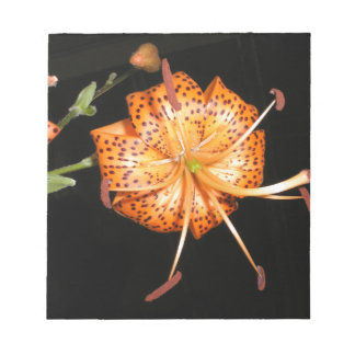 Tiger Lilly on Black Background Notepads