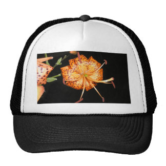 Tiger Lilly on Black Background Trucker Hat