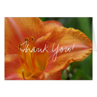 Tiger Lily Thank You White Card