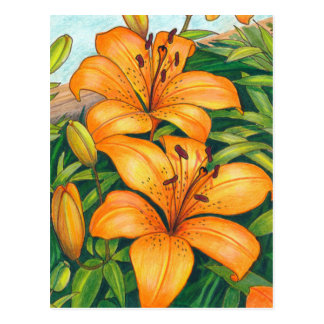 Tiger Lily Vertical Postcard