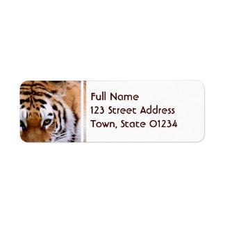 Tiger Markings  Mailing Labels