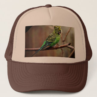 Tiger Parakeet Trucker Hat