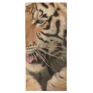 Tiger Paws Face Eyes | Wildlife Photography Wood USB 2.0 Flash Drive