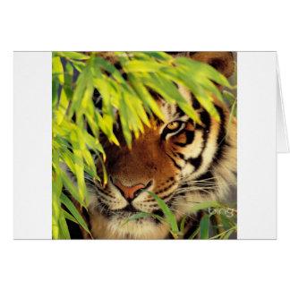 Tiger Peers Behind A Leaf Card