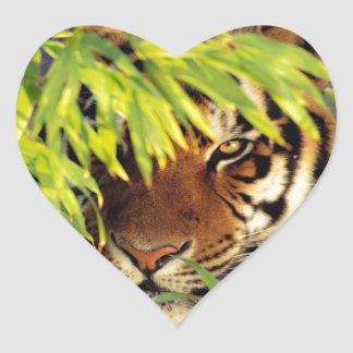 Tiger Peers Behind A Leaf Heart Sticker