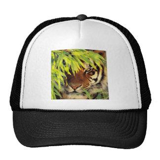 Tiger Peers Behind A Leaf Trucker Hat