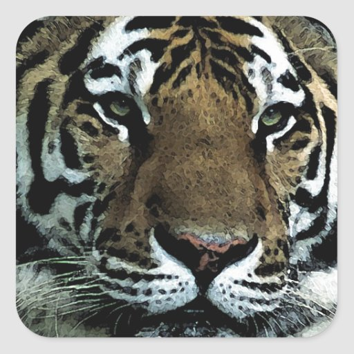 Tiger Power Square Stickers