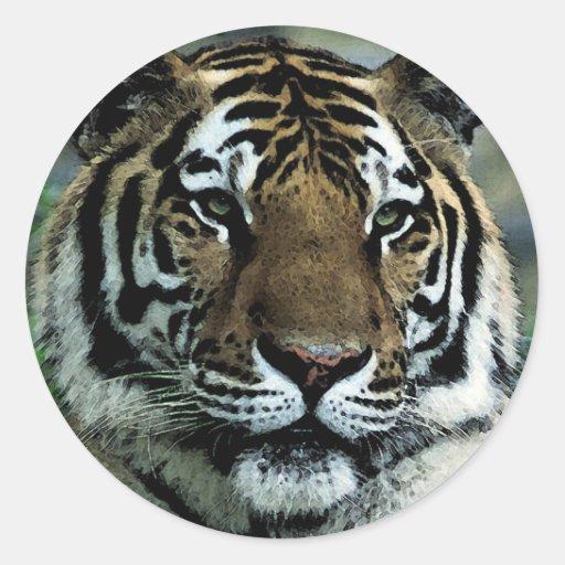 Tiger Power Round Stickers