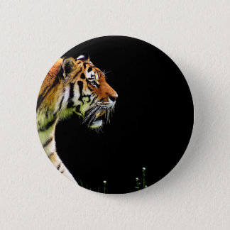 Tiger Predator Fur Beautiful Dangerous Cat 2 Inch Round Button