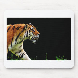Tiger Predator Fur Beautiful Dangerous Cat Mouse Pad