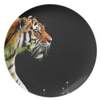 Tiger Predator Fur Beautiful Dangerous Cat Plate