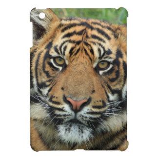 Tiger Puts Savvy Shining iPad Mini Box iPad Mini Case