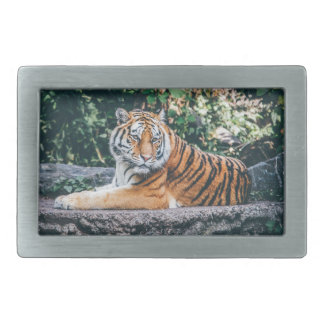 Tiger Rectangular Belt Buckle