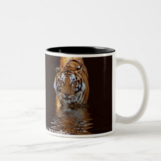 Tiger Reflection Mug