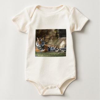 Tiger Resting Baby Bodysuit
