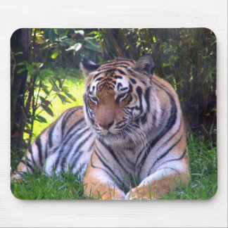 Tiger resting mouse pad