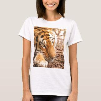 Tiger resting T-Shirt