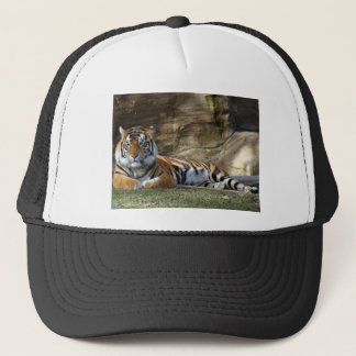 Tiger Resting Trucker Hat