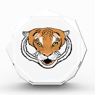 Tiger Roaring Award