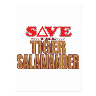 Tiger Salamander Save Postcard