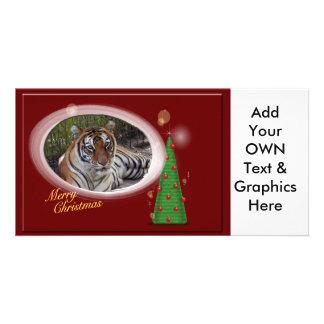 Tiger Sarmoti-c-104 copy Photo Cards