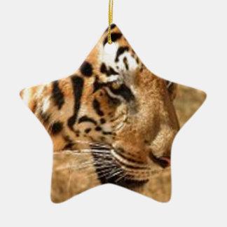 Tiger Stalking in India Ceramic Star Ornament