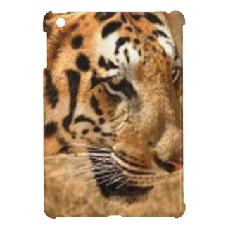 Tiger Stalking in India Cover For The iPad Mini
