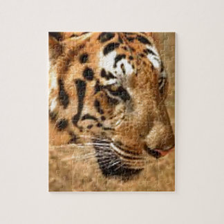 Tiger Stalking in India Jigsaw Puzzle