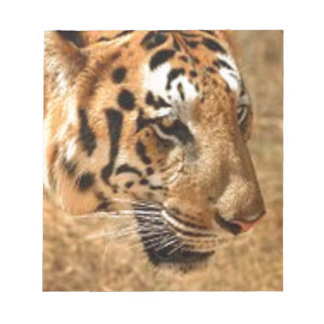 Tiger Stalking in India Notepads