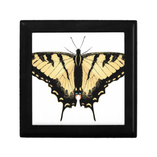Tiger Swallowtail Butterfly 2 Trinket Boxes
