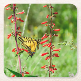 Tiger Swallowtail Butterfly and Wildflowers Square Paper Coaster