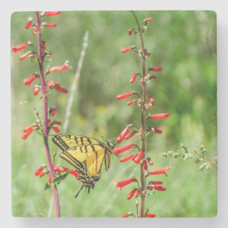 Tiger Swallowtail Butterfly and Wildflowers Stone Coaster