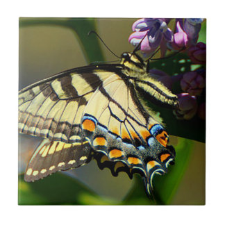 Tiger Swallowtail Butterfly Ceramic Photo Tile