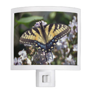 Tiger Swallowtail Butterfly Night Light