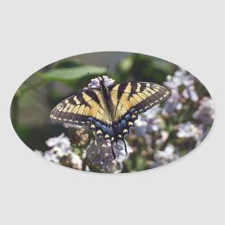 Tiger Swallowtail Butterfly Oval Sticker