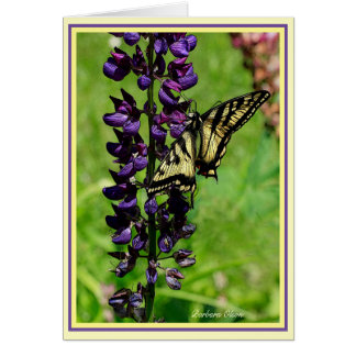 Tiger Swallowtail Card
