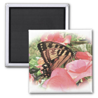 Tiger Swallowtail Magnet