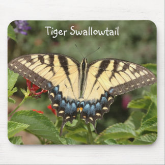 Tiger Swallowtail Mouse Pad