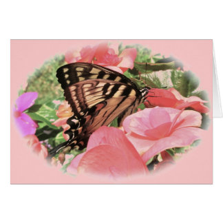 Tiger Swallowtail Note Card