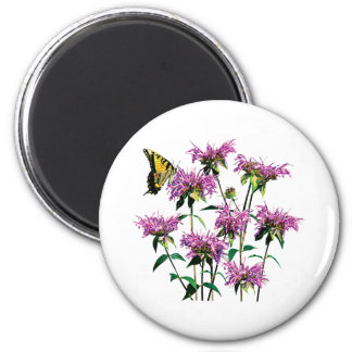 Tiger Swallowtail on Bee Balm Magnet