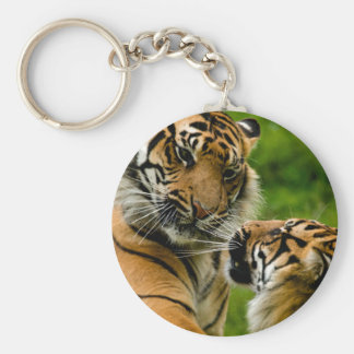 Tiger tiger keychain