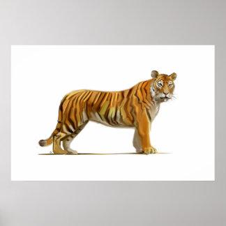 Tiger to tiger poster