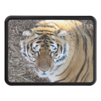 Tiger Truck Hitch Cover