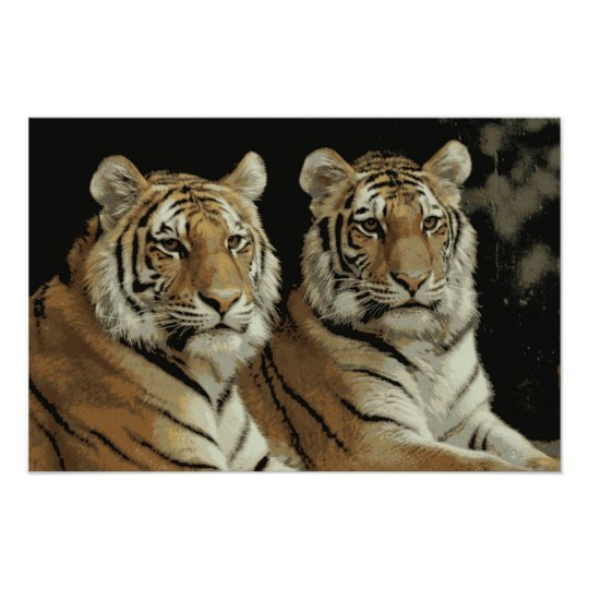 Tiger Twins Poster
