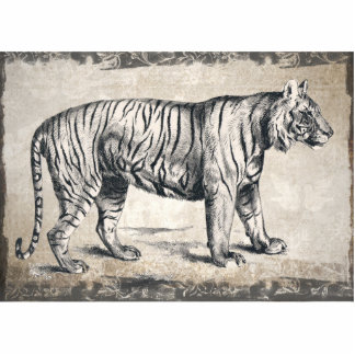 Tiger Vintage Wildlife Grunge Decorative Photo Sculpture Button